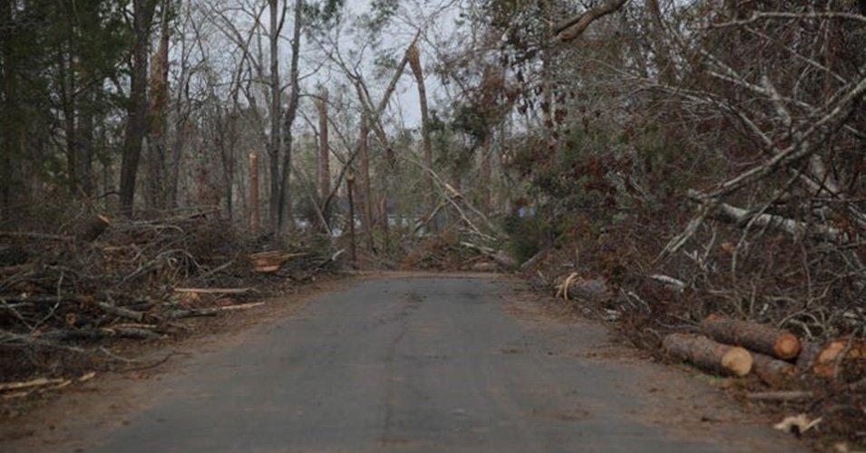 Debris Monitoring (DR-4399) – FL Caverns State Park Hurricane Michael